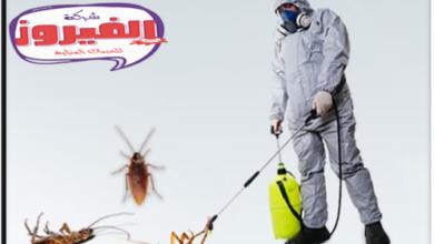Photo of شركة مكافحة حشرات بالاحساء 0557525030 خصم 20% اتصل بنا الأن